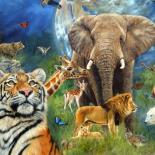 عالم الحيوانات