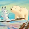 الدب القطبي الصغير