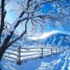 فصول السنة الشتاء